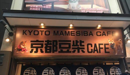 京都豆柴カフェに行ってきた!感想と予約方法や注意事項を紹介【写真満載レポ】